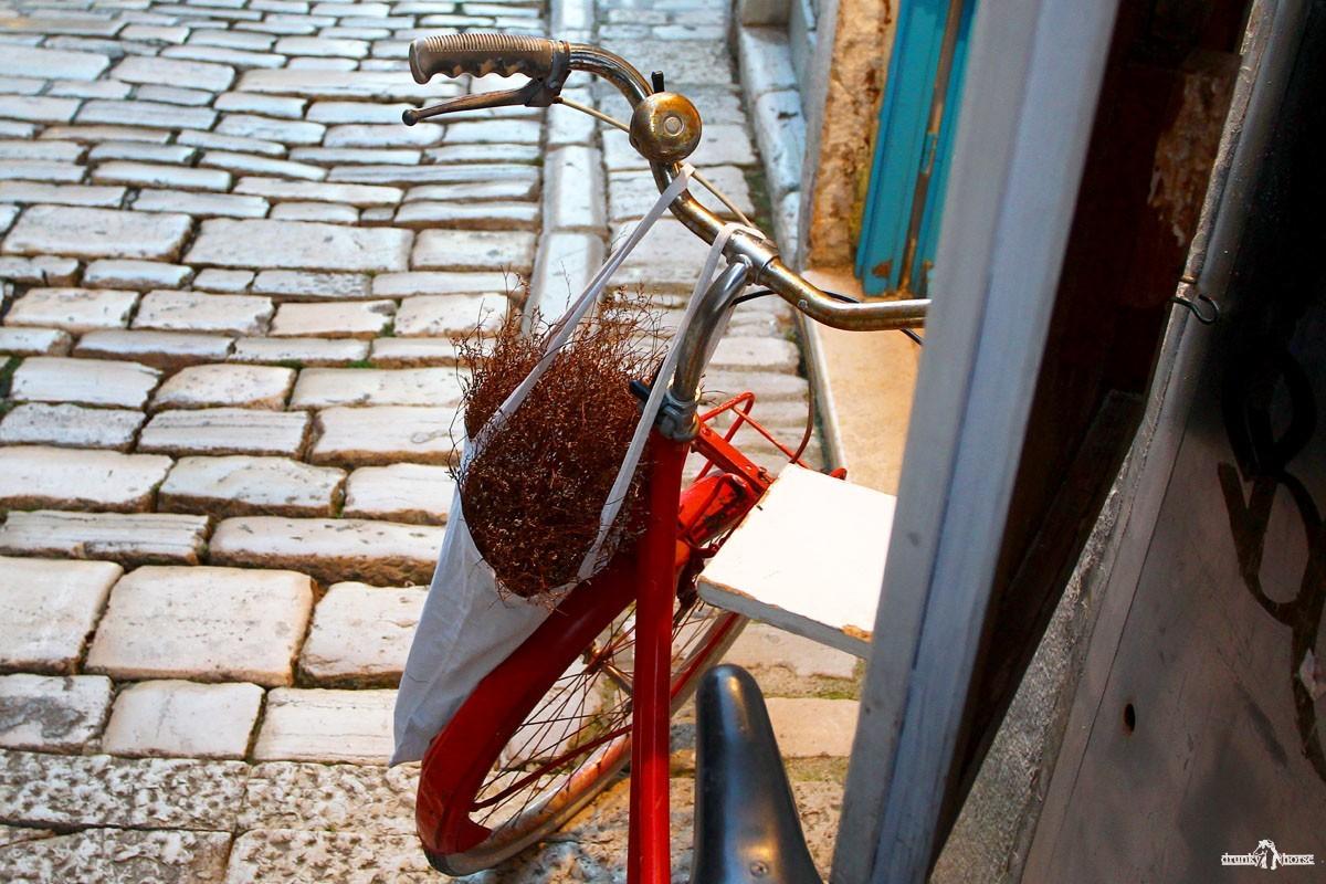 Кругосветное путешествие на велосипеде