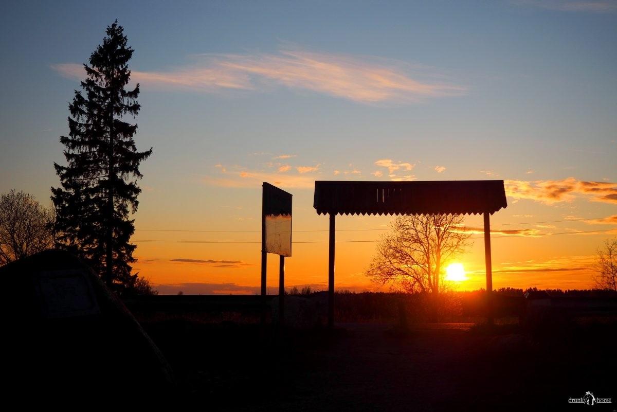 """Ворота. Вход на территорию курганного комплекса """"Урочище """"Сопки"""". Вид со стороны курганов"""